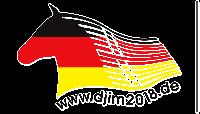 DJIM 2018 Logo