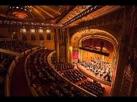 San Diego Symphony Logo
