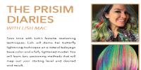 Prism Diaries Logo