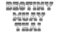 Destiny Muay Thai 8 Logo