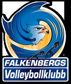 Semifinal 2 Falkenbergs VBK vs HH VBK Logo