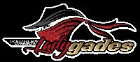 Lady Gades vs. Thunderkatz - WFA Playoffs Round 1 Logo