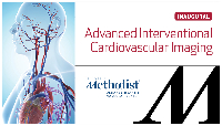 Advanced Interventional Cardiovascular Imaging (ICI) 2017 Day 2 Logo