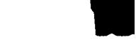 BCMMA 17 Logo