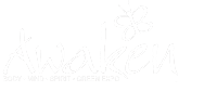Awaken Fair NYC Logo